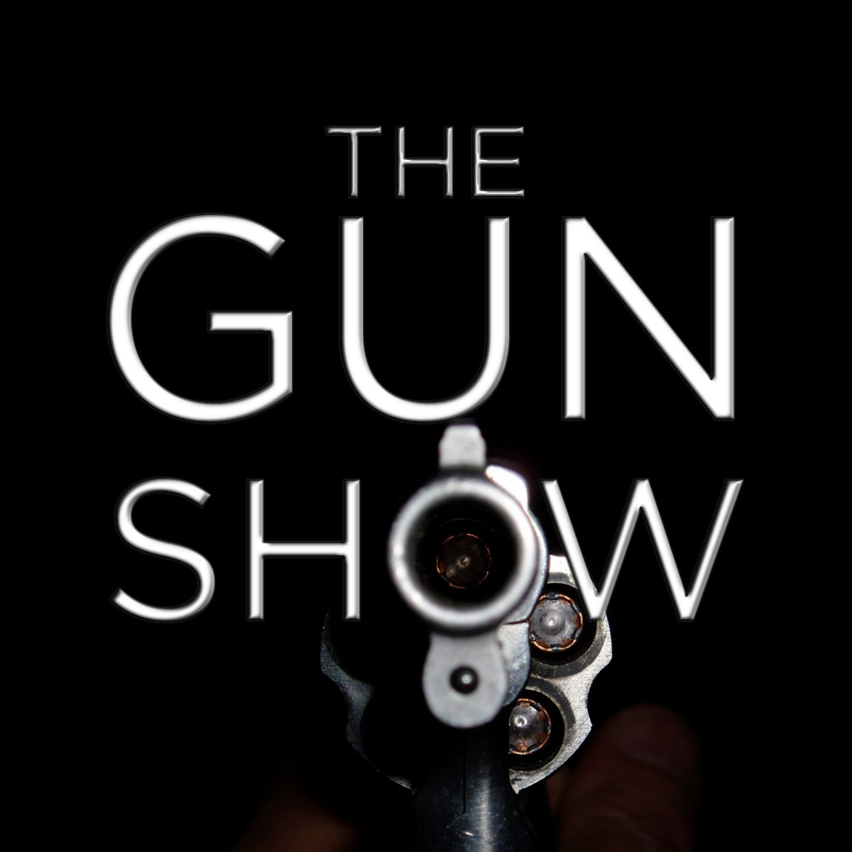 The Gun Show Passage Let Me Tell You Some Stories About Guns
