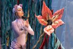THE JUNGLE BOOK (PA Ballet II): Ballet for kids and kids at heart