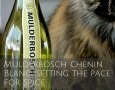 Mulderbosch Chenin Blanc- Setting the pace for spice