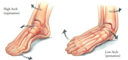 Image result for supination