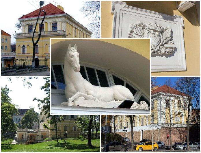 Загадковий будинок з коником, або бібліотека Баворовських
