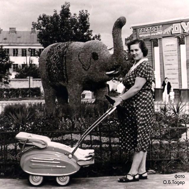 Зелена інсталяція у вигляді слона біля Львівського цирку. Фото 1960-х рр. Автор: О.Тадер