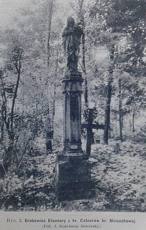Стрийське кладовище - одне з чотирьох цвинтарів Львова, відкритих після розпорядження Йосифа II. Фото кінця XIX - поч. XX ст.