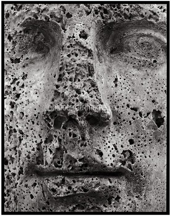 MDAA, Auguste © Michel Bourguet