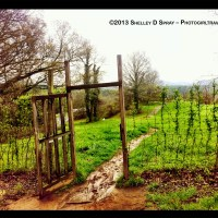 Biltmore Estate, My Secret Walk - Final Approach!