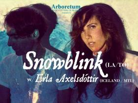 snowblink-erla