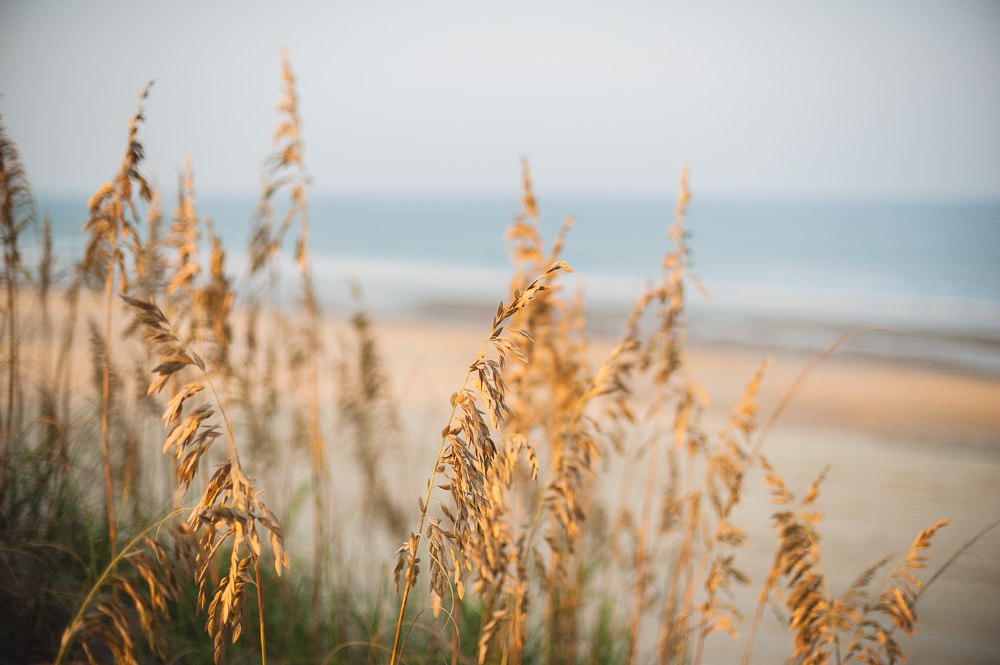 Outer_Banks_0007_150903