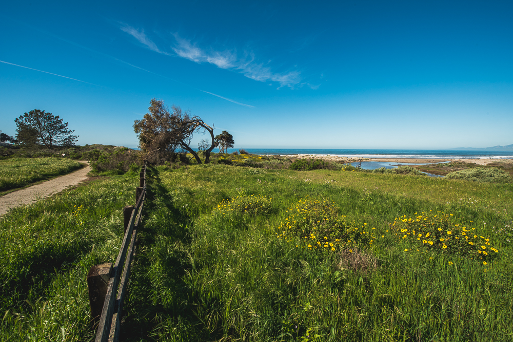PCH_Day_2_0004_160315