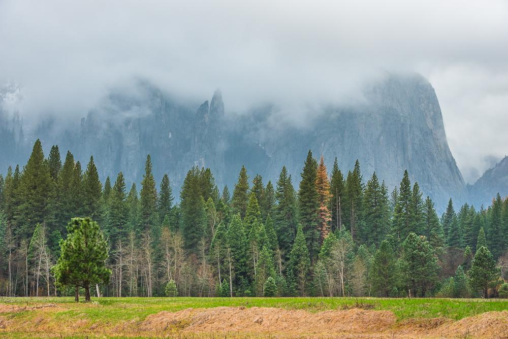 Yosemite_Day_1_0022_160321