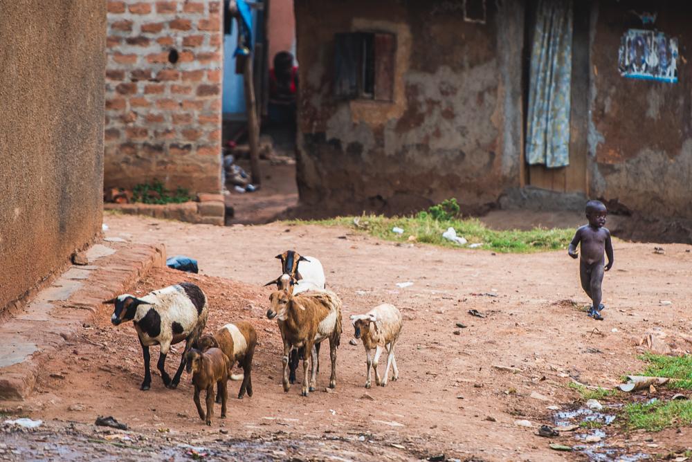 wmm_uganda_trip_day_3_0022_160918