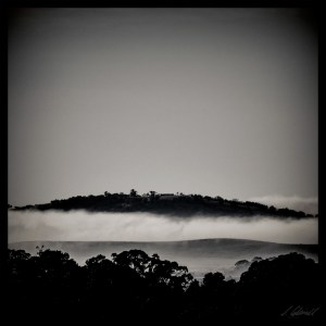 foggy_hill