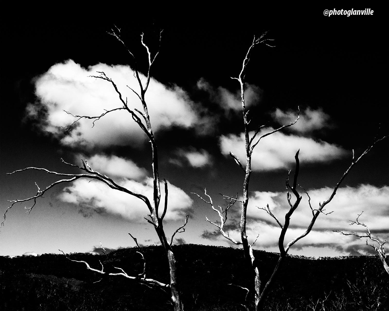 Tasmania, a photographers paradise.