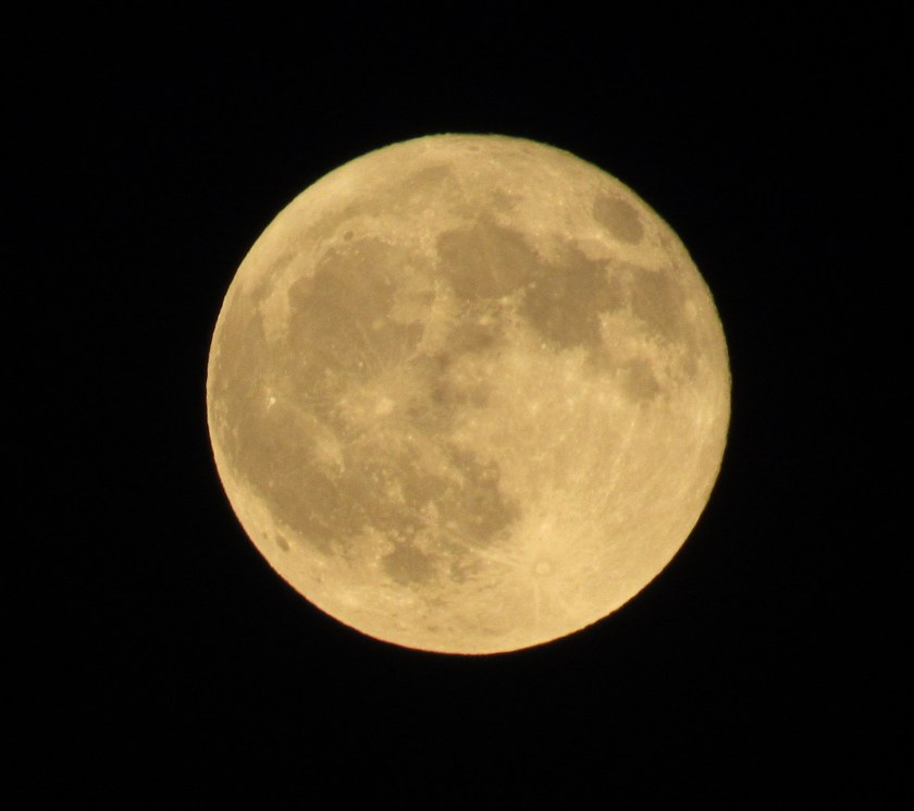 Tonight I went out once again to capture the full moon in the night sky.