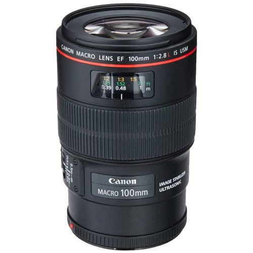Medium Crop Of Canon Full Frame Lenses