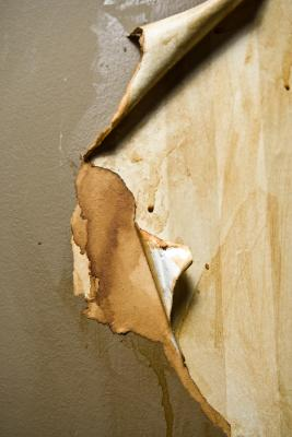 How to Prepare Walls for Paint After Removing Wallpaper | Home Guides | SF Gate