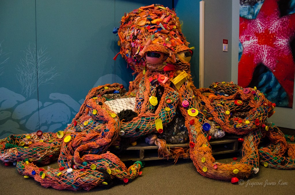 SeaLife Center in Seward - octopus built with trash found on the shore is giving us a message