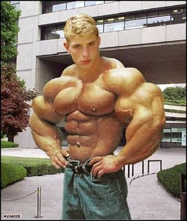 morphed bodybuilders on deviantart