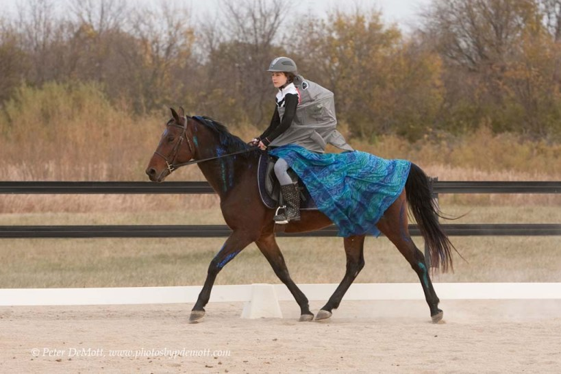 RR3D8691 Costume dressage horse show at Dancing Horse Farm in Lebanon Ohio   perfect for October