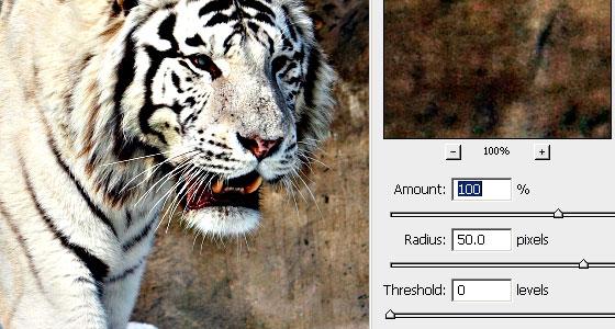 Photoshop Unsharp Mask