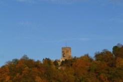 Burg.Lahneck.Face.2015-photosvonlahnstein.de-p1020196