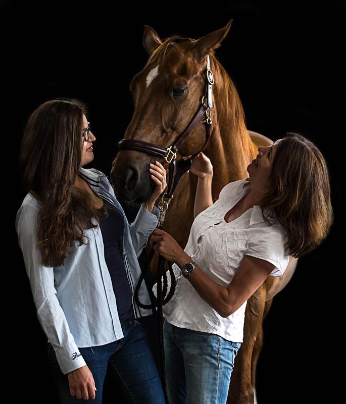 Pferde15