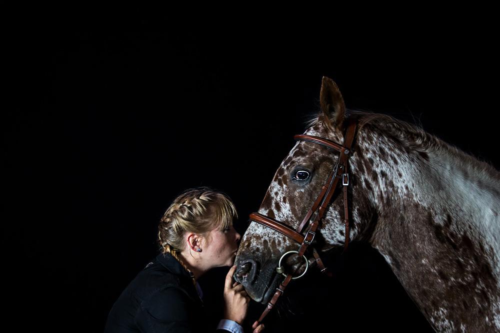 Pferde24