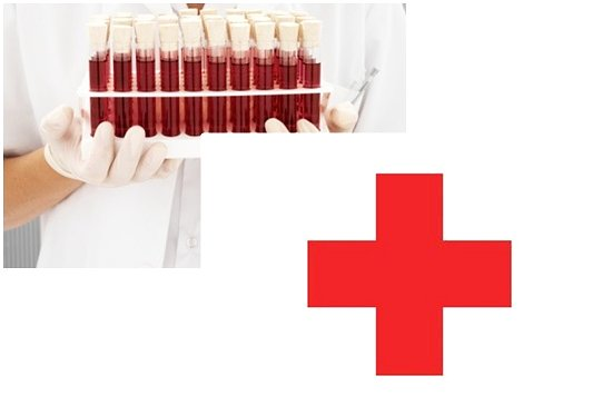 Phuket Red Cross and Blood Service