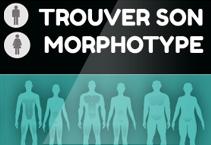 morphotype-fiche
