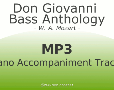 Don Giovanni Bass Collection