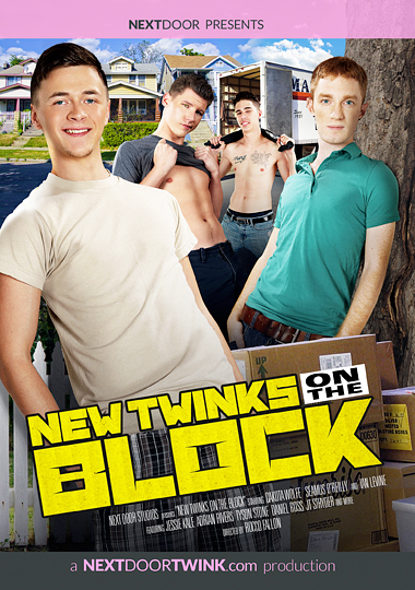 New Twinks On The Block cover