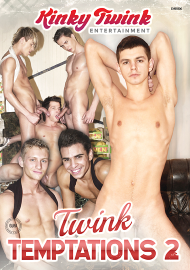 Twink Temptations 2 cover