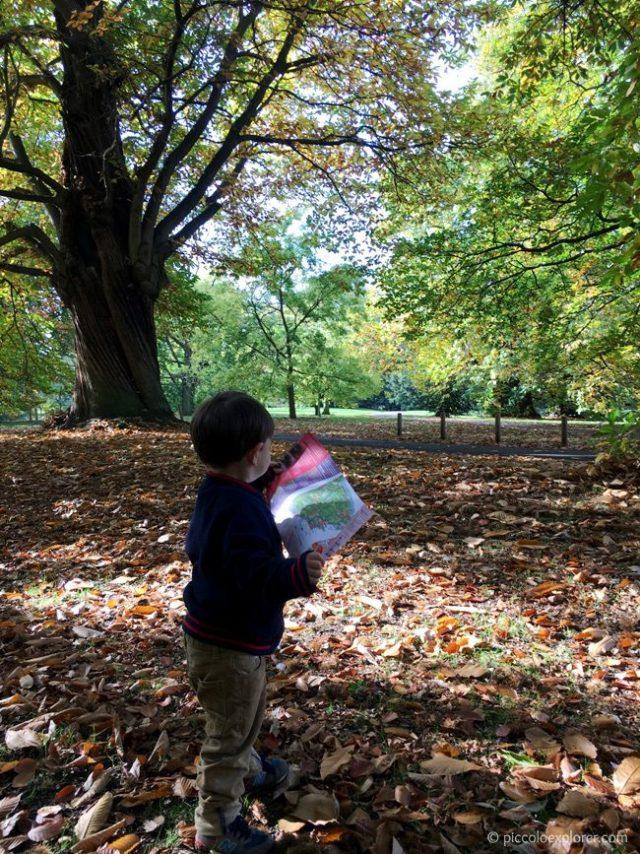 Autumn Foliage at Kew Gardens