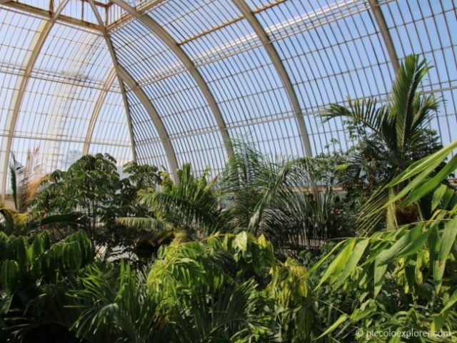 The Palm House, Kew Gardens