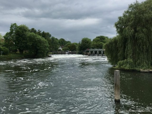 River Cruise from Bray to Windsor