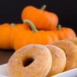 pumpkin-donuts-2