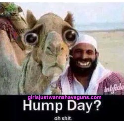 Small Crop Of Happy Hump Day Meme