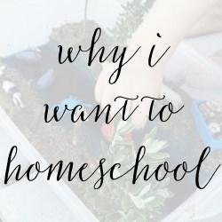 5 Reasons Why I Want to Homeschool