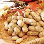 落花生の栄養は薄皮(渋皮)まで食べると満点‼食べ過ぎは減点!