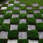 京都の庭園のハイレベルのおすすめは!!石や白砂の美しい凝縮された傑作!