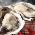 牡蠣の生食用と加熱用の本当の違い!!洗い方下処理法と安全な食べ方を‼