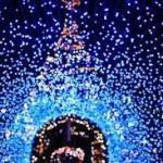 冬のイルミネーション関東おすすめ人気ランキング!!光と音と映像で魔法の時間❣