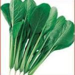 小松菜の生の栄養は免疫力を上げる!!効能の成分は特別でレシピを活用❣