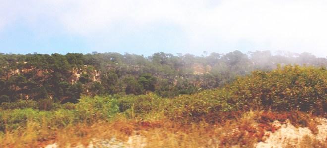 Ausblick Minicomboio da Caparica