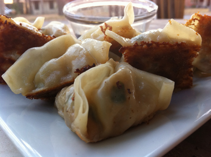 WEB-Potstickers with sauce copy