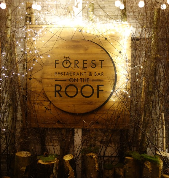 Forest on the Roof