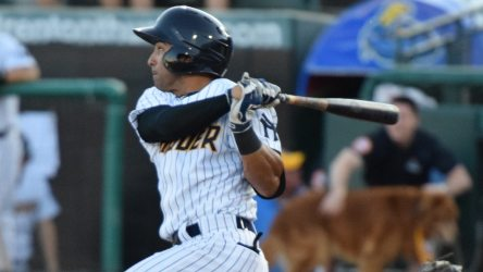 Ali Casttillo had a pair of RBIs in the RailRiders' Game 1 loss. (Robert Pimpsner)