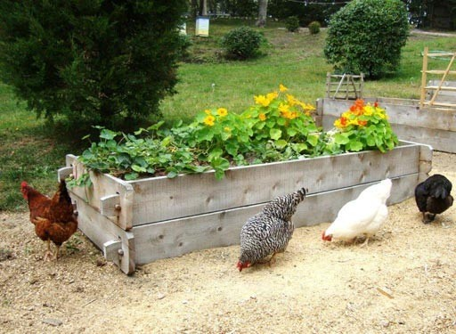 IMHO: The Best Raised Garden Beds