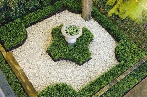 Daily Garden 007 – Peter Fudge