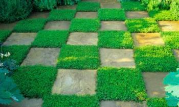 gardenfeature1460