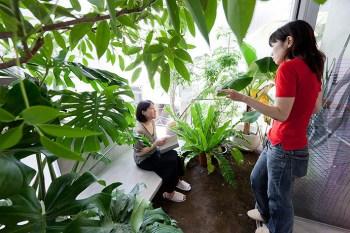 Garden-House-RNA-4651
